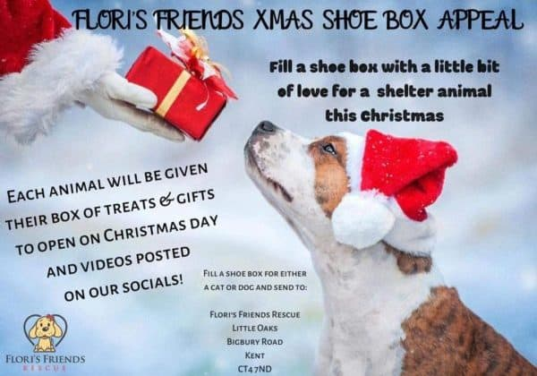 Xmas shoe box appeal