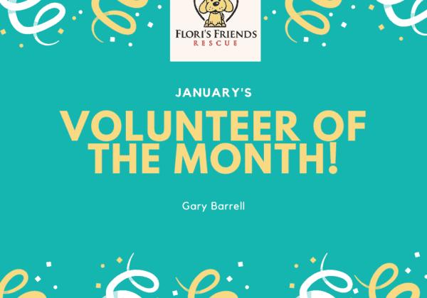 Flori's Volunteer of the Month